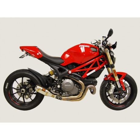 Werkes GP Ducati Monster 1100 Evo