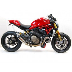 Werkes GP Ducati Monster 1200 / 821